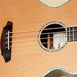 Bass-of-the-Week-08-NEWS-Breedlove