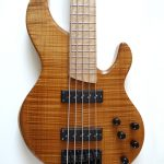 Dolan Custom Guitars Proteus Legacy 5 Bass Guitar