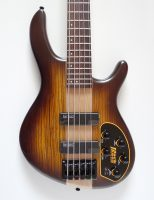 Cort Artisan C5 plus ZBMH OTAB Bass Guitar