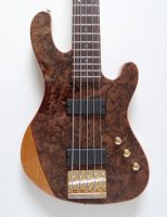 Cort Rithmic V Jeff Berlin Signature Bass Guitar
