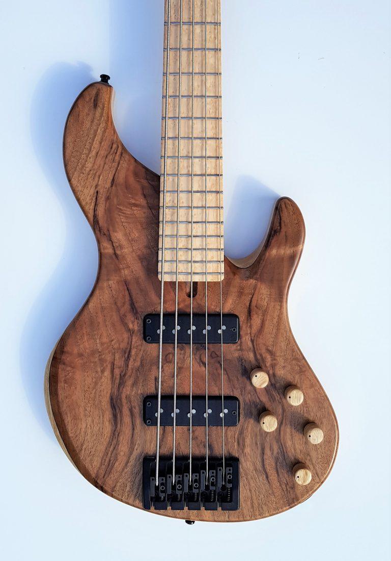 Dolan Custom 5 string